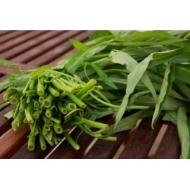 Water Spinach - Seeds