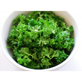 Parsley (green) - Seeds