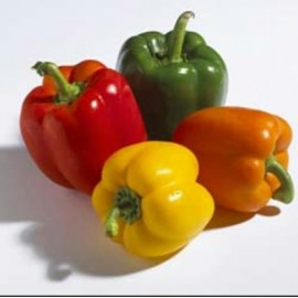 Bell Pepper - Seeds