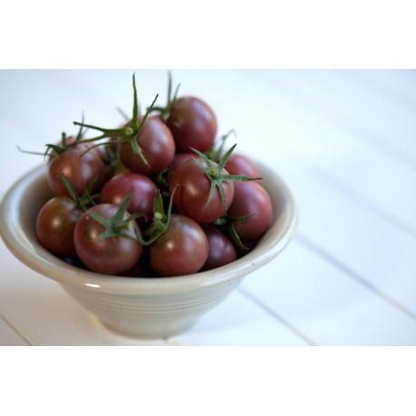 Brown Tomato Seeds Seedarea