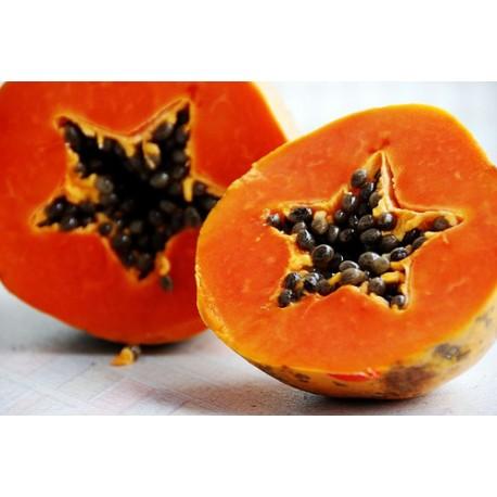 Papaya - Seeds
