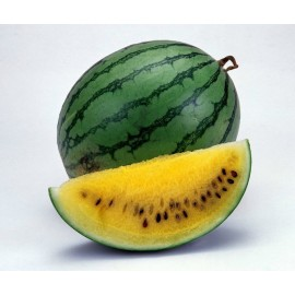 Yellow Watermelon - Seeds