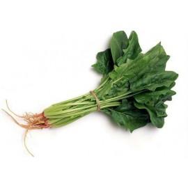 Spinacia oleracea / Pok Choy - Seeds