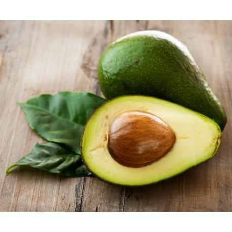 Avocado - Seeds